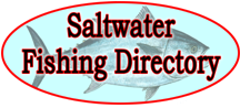 Fishing Lures - Saltwater Fishing Lures